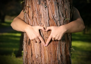 Tree Lover. empowers people to grow & care for trees © Leah-Anne Thompson // Fotolia #3670455