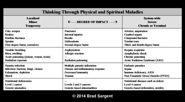 Thinking Through Physical and Spiritual Maladies © 2014 Brad Sargent